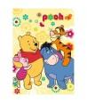 Patura acrilic Winnie the Pooh 80x110cm WTP08B